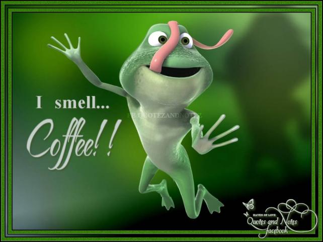 FrogCoff