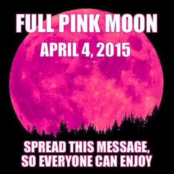 Full Pink Moon Full Lunar Eclipse April 4 2015 It