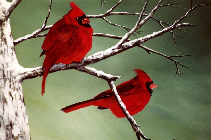 The Red Birds Have A Special Meaning Cardinals It Is What It Is
