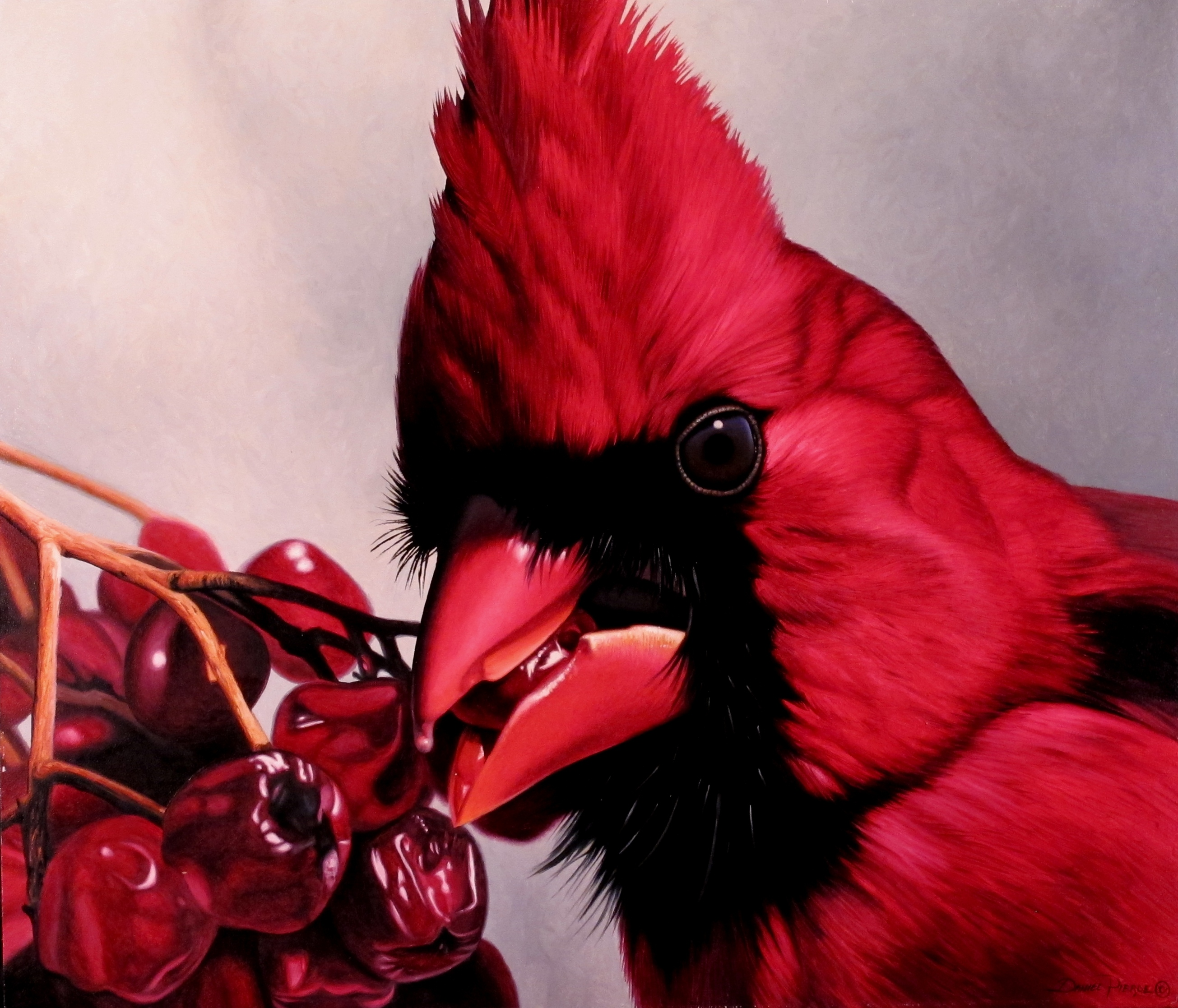 the red birds have a special meaning u2026 u201ccardinals u201d it is what