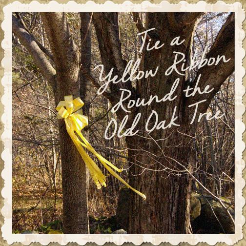 7 dawn tie yellow ribbon round the ole oak tree: