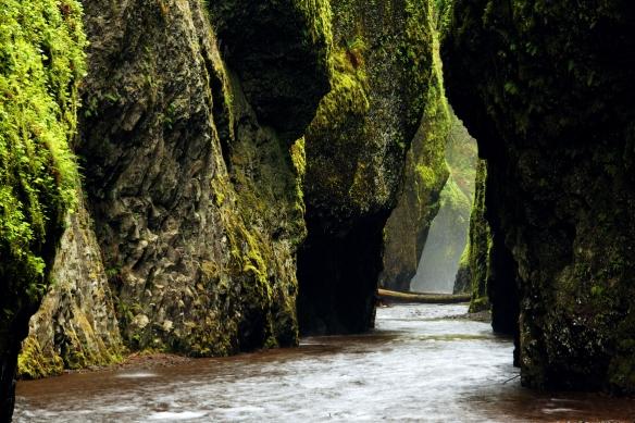 Oneonta Creek flowing through Oneonta Gorge, Columbia River Gorge National Scenic Area, Oregon, USA