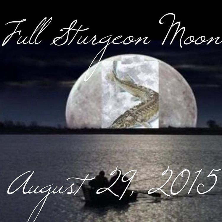 full moon august - photo #6