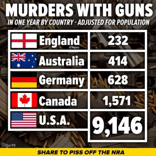 GunCountries