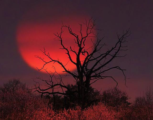 blood moon tonight canada - photo #33