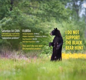 Florida Bear Numbers