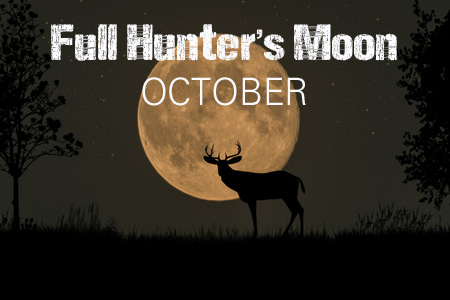Hunter's Full Moon Rising - Step Outside and Enjoy the Celestial Spectacle Hmoon9