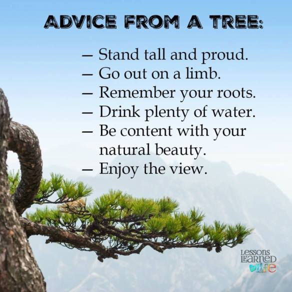 TreeAd