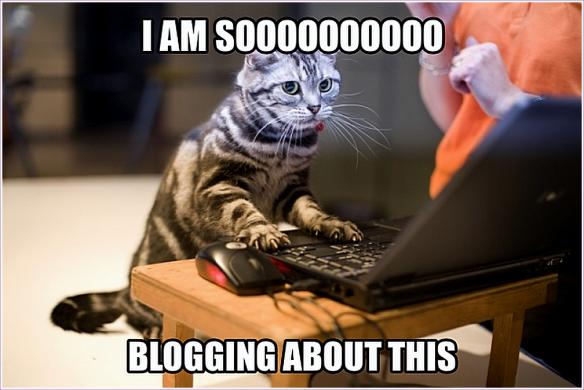 BlogCat