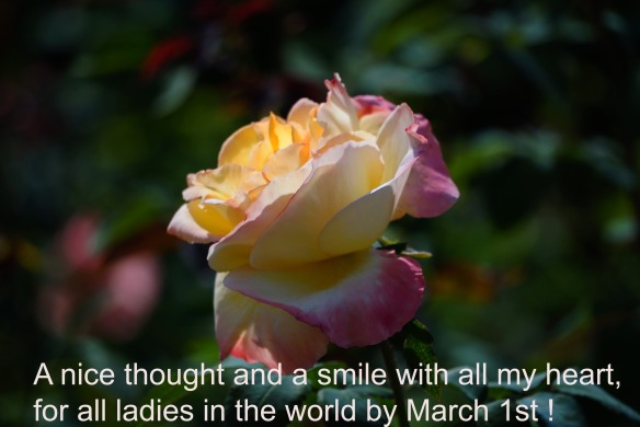 spring soul 1