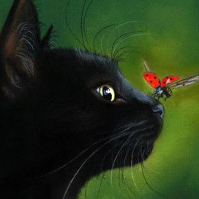 BlackBut