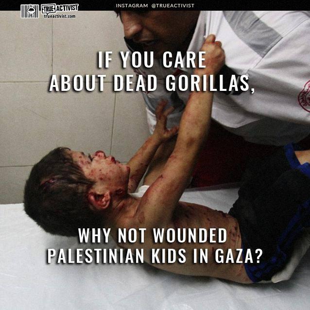 GazaKid