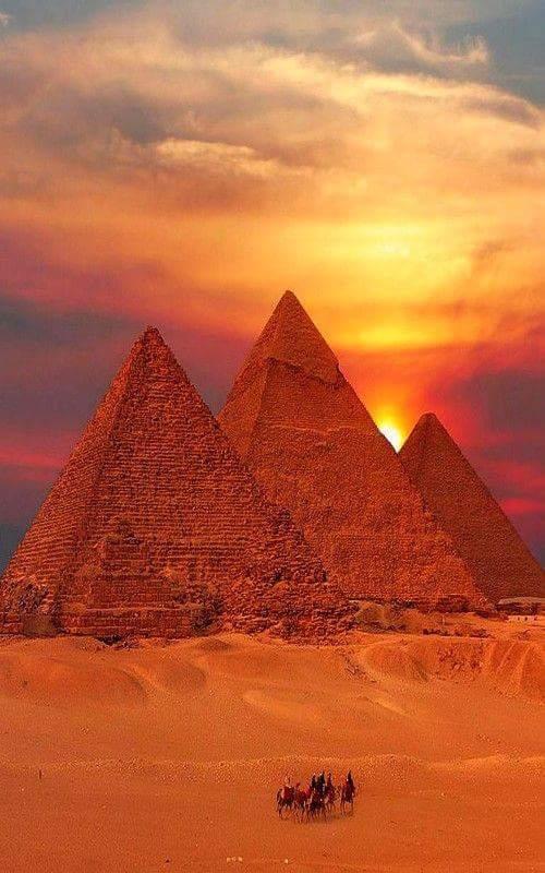 camel-wednesday-hump-day-pyramids