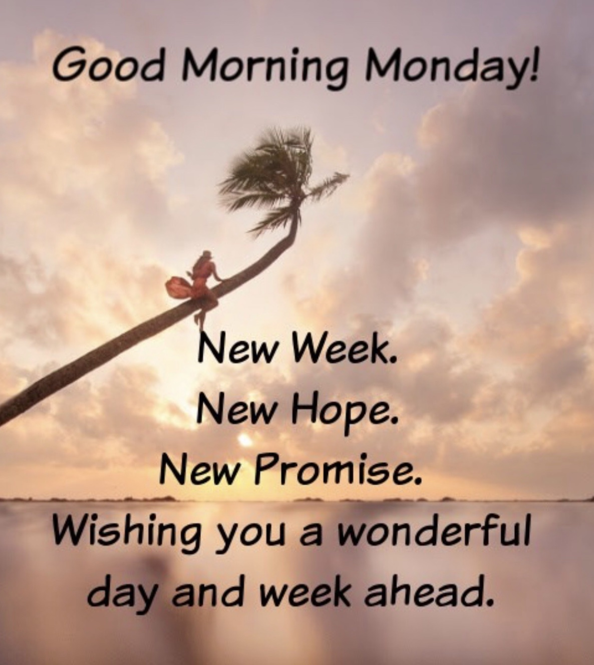 """To Start the Day …. """"🧚🏼♀️ 'Good Morning Monday ..."""