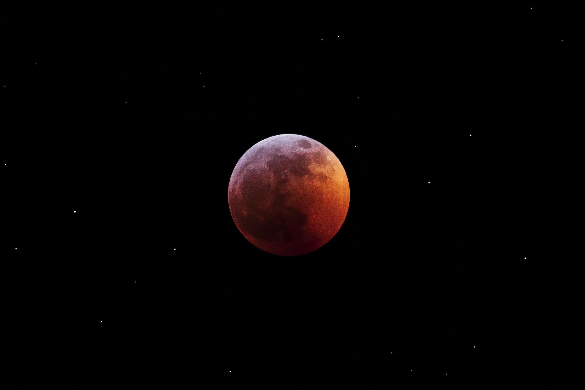 Super Blood Wolf Moon.jpg